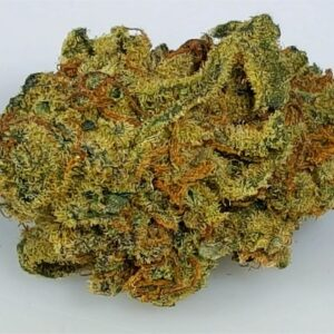 Granddaddy Purple Marijuana Strain