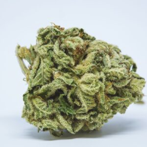 Big Bud Marijuana Strain